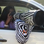 Beanbag Zebra 1