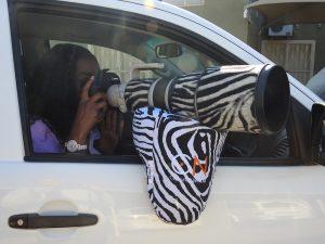 Beanbag Zebra 2