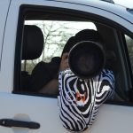 Beanbag zebra 4