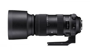 Sigma 60-600 mm Sport